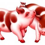 2014年属猪的人马年运程