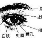 男人面相眼睛图解
