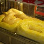 孕妇梦见蛇被别人打死了是什么意思