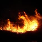 梦见着火又被扑灭是什么意思